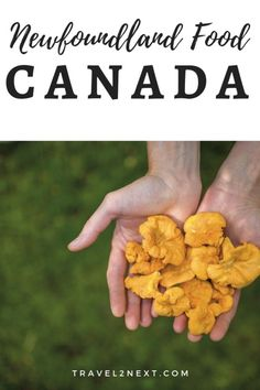 Newfoundland Food And Traditions. Canada's easternmost province of Newfoundland and Labrador has a wild natural beauty and a never ending coastline. Backpacking Canada, Canada Travel, Travel Usa, Ski Canada, Newfoundland Canada, Newfoundland And Labrador, Alberta Canada, World Travel Guide, Travel Tips