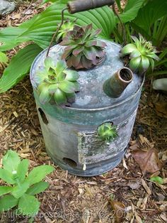 Turn vintage watering cans into succulent planters: http://www.myrepurposedlife.net/2011/05/repurposed-vintage-gaswatering-cans.html
