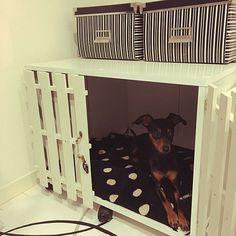 女性で、Otherのセリア/IKEA/モノトーン/犬小屋/犬小屋DIY/カラボリメイク…などについてのインテリア実例を紹介。「ペットの小屋をDIY♡」(この写真は 2015-12-16 12:46:32 に共有されました)