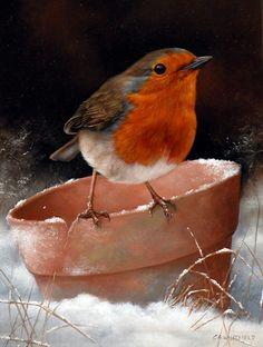 Мобильный LiveInternet Мир птиц. Художник Carl Andrew Whitfield (1958). Часть 2 | Белоснежка_11 - Дневник Белоснежка_11 |