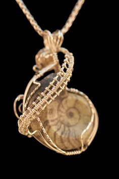 Nautilus Fossil Wire Wrap in Sterling SIlver by Rainbowbridgebeads, $165.00