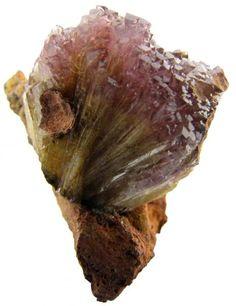 Adamite, var. Manganoan (purple) on Limonite