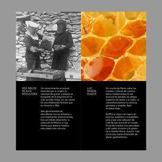 Catálogo de miel ARTMURIA.