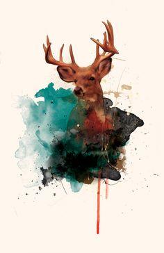 Deer \\ Like the Dawn  Art Print - by Amy Hamilton