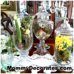 apothecary jar decorating ideas | 10 DIY Apothecary Jar Fillers For Spring