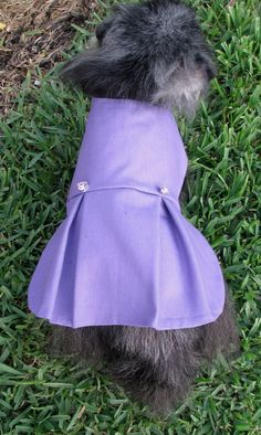 Dog Clothes Toy Breed Made to Order  by BloomingtailsDogDuds, $23.95