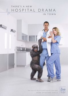 hospital drama - 2