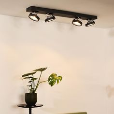 Room Lights, Wall Lights, Ceiling Lights, Dining Room Lighting, Track Lighting, Led, Fitness, Home Decor, Products