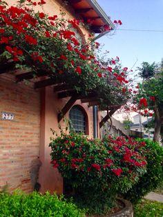 Casa con flores .Asunción