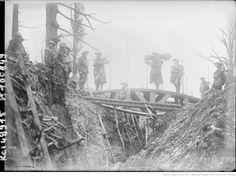 WWI, Surroundings of Gommécourt, Pas-de-Calais, British advance.