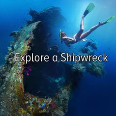 Bucket list: explore a shipwreck.I would love to do this, but seeing how I'm deathly scared of going into the ocean I'm not sure how this would work.But if I decided to do it I would totally check out the Titanic shipwreck for sure! Oh The Places You'll Go, Places To Travel, Places To Visit, Adventure Bucket List, Adventure Is Out There, Saint Tropez, Bucket List Before I Die, 100 Things To Do, Shipwreck