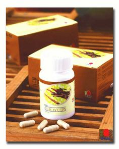 Cordyceps Sinensis (Dong Chong Xia Cao) is one of the most valued medicinal fungi which is a very well known and important ingredient in Chinese traditional supplement. Nowadays Cordyceps Sinensis ...