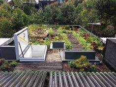 gorter roof hatch and electric scissor stairs at eco house sydney