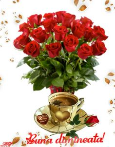 Plants, Blog, Home Decor, Flower Arrangements, Good Morning, Homemade Home Decor, Blogging, Plant, Interior Design