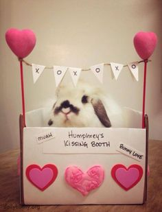 Humphrey's kissing booth