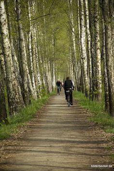 #Radfahren im #Spreewald dann bitte www.hotel-stern-werben.de