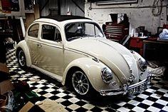 Cox 61 découvrable / ragtot beetle