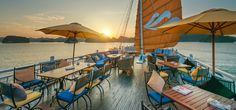 Com - Paradise Luxury Cruise is a group of luxury 5 star cruise in halong bay. Halong Bay Private Cruise on Paradise Luxury Cruise available now Tai Chi, Paradise Cruise, Cruise Offers, Vietnam Tours, Ha Long Bay, Best Cruise, Natural Wonders, Kayaking, Swimming