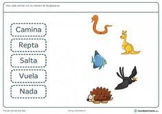 Ficha de la manera de desplazarse de los animales para primaria Teaching Spanish, Science Activities, Farm Animals, Homeschool, Education, Nature, Hercules, Sorting, Google