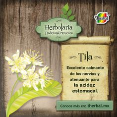 http://www.therbal.mx/home.php