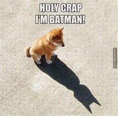 Holy crap I'm 'Batman