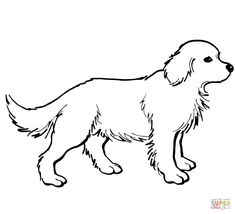 Puppy Coloring Pages Online from Animal Coloring Pages category. Printable coloring pictures for kids that you could print out and color. Have a look at our collection and print the coloring pictures for free. Golden Retrievers, Perros Golden Retriever, Chien Golden Retriever, Puppy Coloring Pages, Printable Coloring Pages, Coloring Pages For Kids, Coloring Worksheets, Coloring Sheets, Colouring
