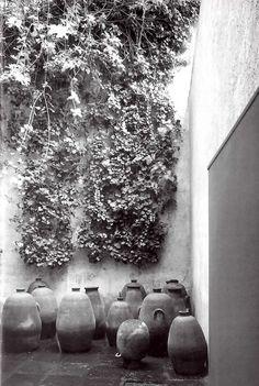 unavidamoderna:    Patio de los Ollas, Casa Barragán, Calle General F Ramírez, Tacubaya, México D.F 1948  Arq. Luis Barragán  Foto: Alberto Moreno  Patio of Pots, Barragan House, Tacubaya, Mexico City 1948