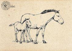 Horses by erzsebet-beast.deviantart.com on @deviantART