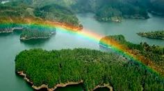 Take a look at my blogpost, folks👇 Colombia Un País Maravilloso lleno De Fauna y Flora. https://www.fincasdeturismo.com/colombia-un-pais-maravilloso-lleno-de-fauna-y-flora/?utm_campaign=crowdfire&utm_content=crowdfire&utm_medium=social&utm_source=pinterest  #FincasEnArriendo #AlquilerDeFincasEnElEjeCafetero #AlquilerdeCabañas #AlquilerDeFincasEnVillavicencio #FincasEjeCafetero #FincasParaAlquilar #FincasDeTurismo #PaquetesTuristicos #CasasCampestres