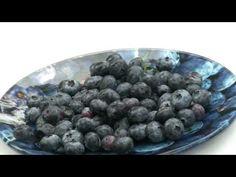 *Premier Blueberry Plant* +Blueberry Bush Up Close+NC Favorite+ Blueberry Plant, Blueberry Bushes, Berry Plants, Berries, Fruit, Food, Essen, Bury, Meals