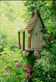 Rustic cabin birdhouse, as garden art, with a vine of wild roses growing on it in shade garden. So pretty, love this scene!!