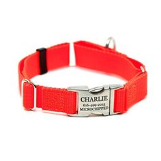 Rita Bean Engraved Buckle Personalized Martingale Style Dog Collar  Neon Orange Nylon Webbing Extra Large -- For more information, visit image link.