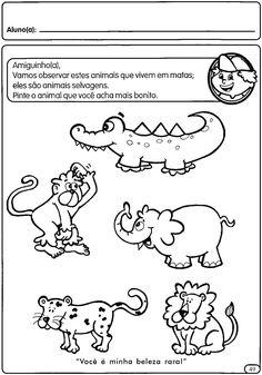 resultado de imagem para animais domesticos e selvagens educação