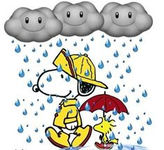 <3 the Rain!