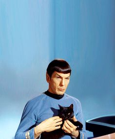 Heh, never gonna forget Spock's apparent love for cats. Since he's Spock I'm sure he'd rather I say toleration, but that would be a lie. #StarTrek #Spock