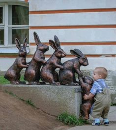 This little boy stopped to try to help a bunny join the rest of his family.
