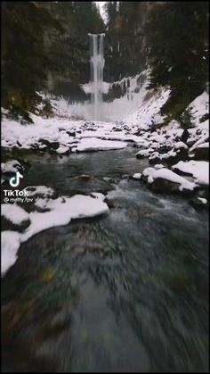 Nature💚Follow @ecosenpai❗ 😅The best video about nature: amazing nature videos forests beautiful places | beautiful nature videos mountains | calm aesthetic nature videos | nature videos flowers spring | natural videos forest sunrises | relaxing nature videos | tik tok amazing nature videos | nature videos paradise | aesthetic nature videos wanderlust | green aesthetic nature videos | earth aesthetic nature videos #nature#lovenature#naturevibes#naturevideos#view Nature Gif, Nature Videos, Tanger Morocco, Save Nature, Nature Aesthetic, Nature Photography, Video Photography, Sea Creatures, Amazing Nature