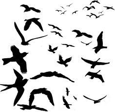 PSD Detail   Mad Birds   Official PSDs