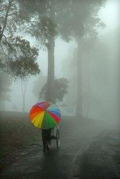 Rainbow umbrella amidst misty grey monsoon