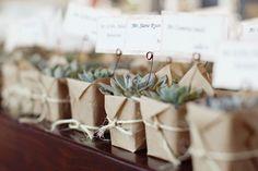 Una planta es muy original, ideal para bodas de día o eco weddings
