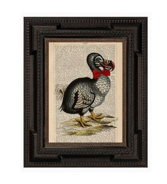 A Dolled Up Dodo Bird Original Collage Print on an Antique Upcycled Bookpage.