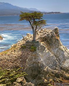 Monterey, California by BrianMorley, via Flickr