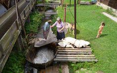 FOTO VIDEO Vâltorile din Lisa, maşini de spălat naturale #romania #brasov