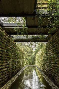 Orchid Pavilion by Manuel Cervantes Cespedes' CC Arquitectos Architecture Durable, Green Architecture, Sustainable Architecture, Landscape Architecture, Landscape Design, Architecture Design, Classical Architecture, Ancient Architecture, Urban Landscape