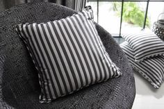Prairie Plains 'Liquorice on Black' upholstered chair with Plagis 'Raven on Black' cushions