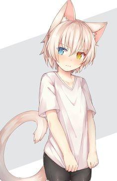 Catboy Fin