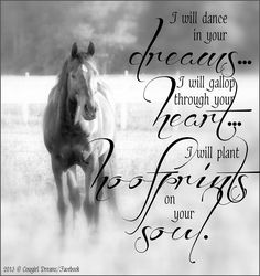 Dreams, heart, hoofprints and soul with the love of horses.