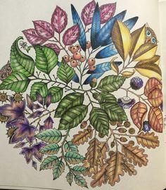 Johanna Basford Colouring Coloring Books Secret Gardens Victorian Homes Berries Mandala Charts Embroidery
