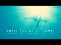 Flying Lotus - Until The Quiet Comes — An absolutely incredible short film by Kahlil Joseph, music from Flying Lotus' album