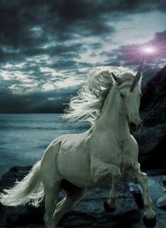 Kai Canarbis' steed is Agides the Unicorn in #DOD4. Agides is just as loyal and…